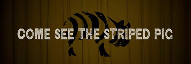 Striped_Pig_Large